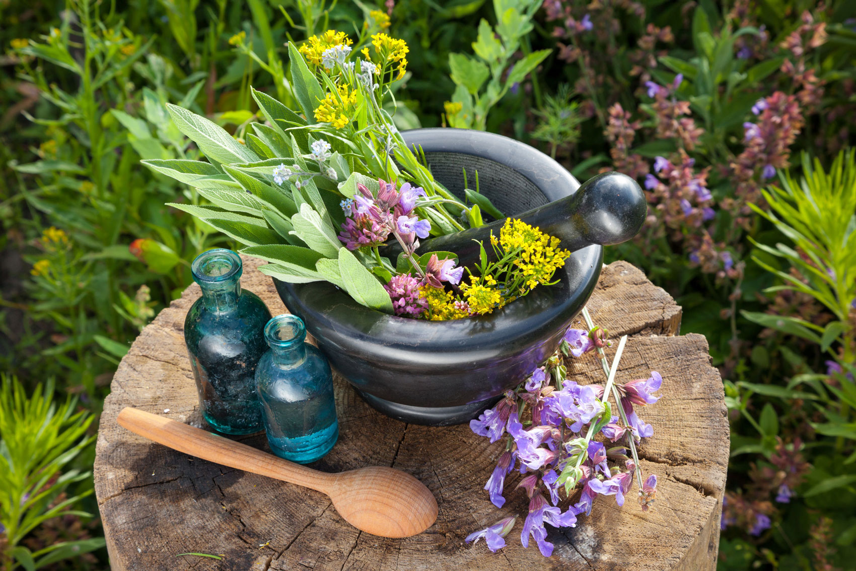 Herbal Garden of Health